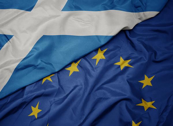 European Union and Scotland flags